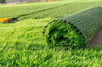 Entenda as diferenças entre Gramados Naturais e Sintéticos para a prática do Futebol